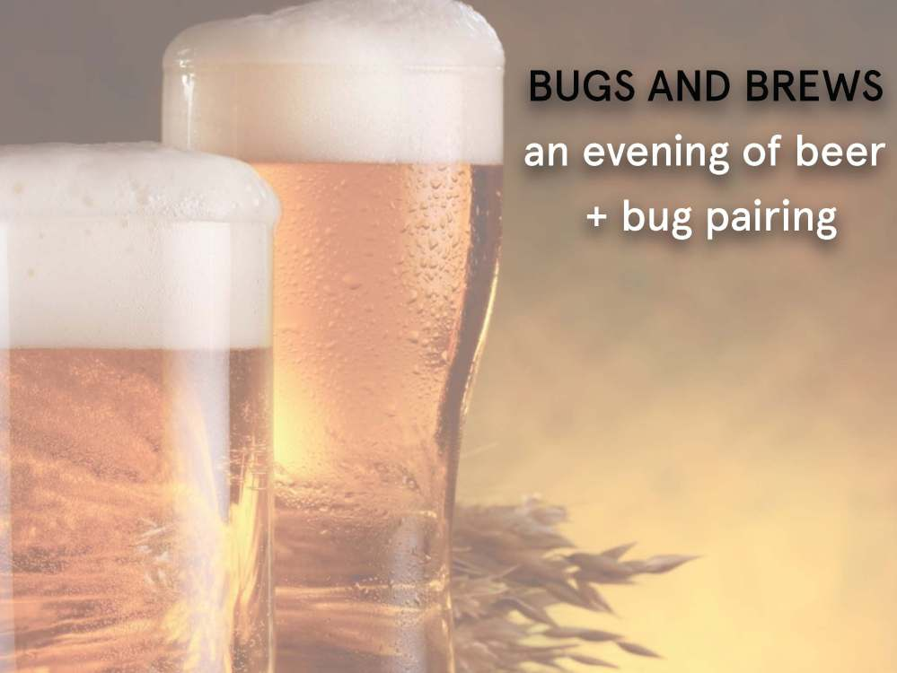 eatbugsevents_beer_Page_1.jpg